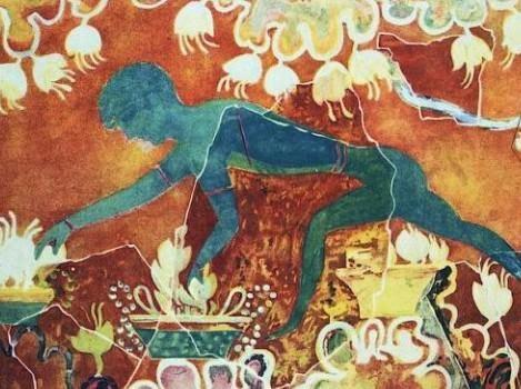 Pittura Murale Che Abbassa La Temperatura  bogor 2022